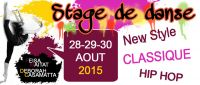 stage-aout-2015.jpg